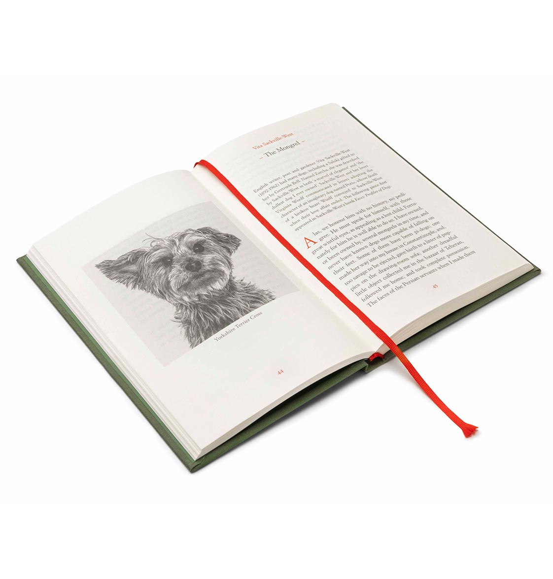 ON-DOGS-INTERIOR-MONGREL-2Single-Book-Close-ups
